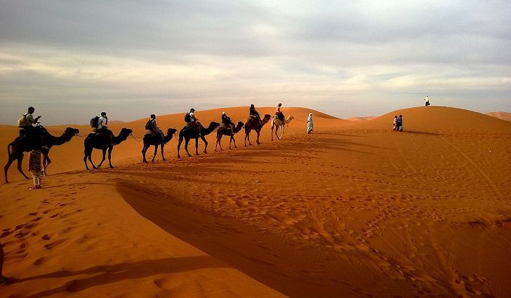 The Largest Deserts In The World Deserts - Largest desert in the world
