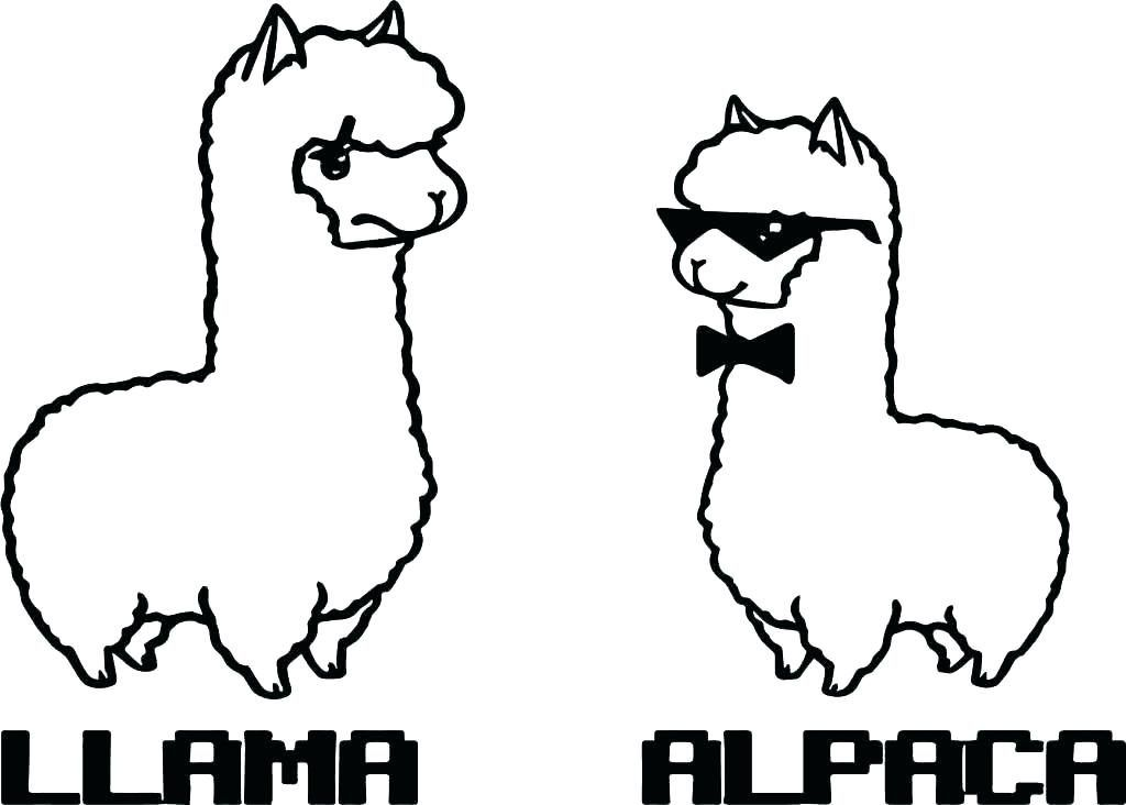 Cute Animal Coloring Pages Best Coloring Pages For Kids Animal Coloring Pages Alpaca Stuffed Animal Cartoon Drawings Of Animals