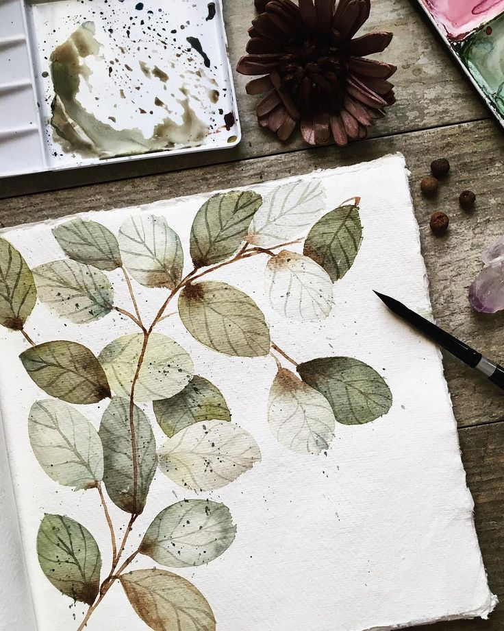 "Inga Buividavice on Instagram: ""I am leaning towards more sophisticated watercolour (at least that what I think). I actually used some layering on those leaves although it…"""