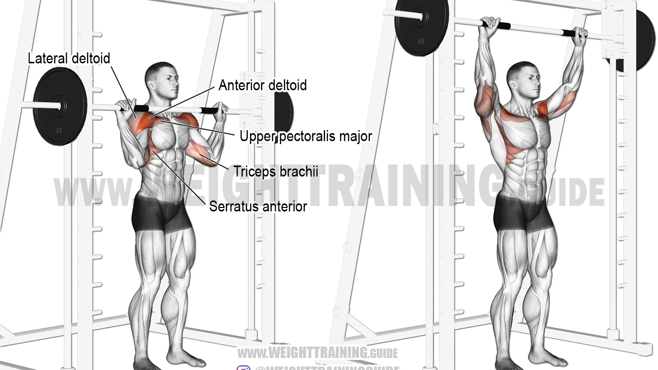Cable Down Up Twist Instructions And Video Weight Training Guide Smith Machine Smith Machine Workout Shoulder Workout