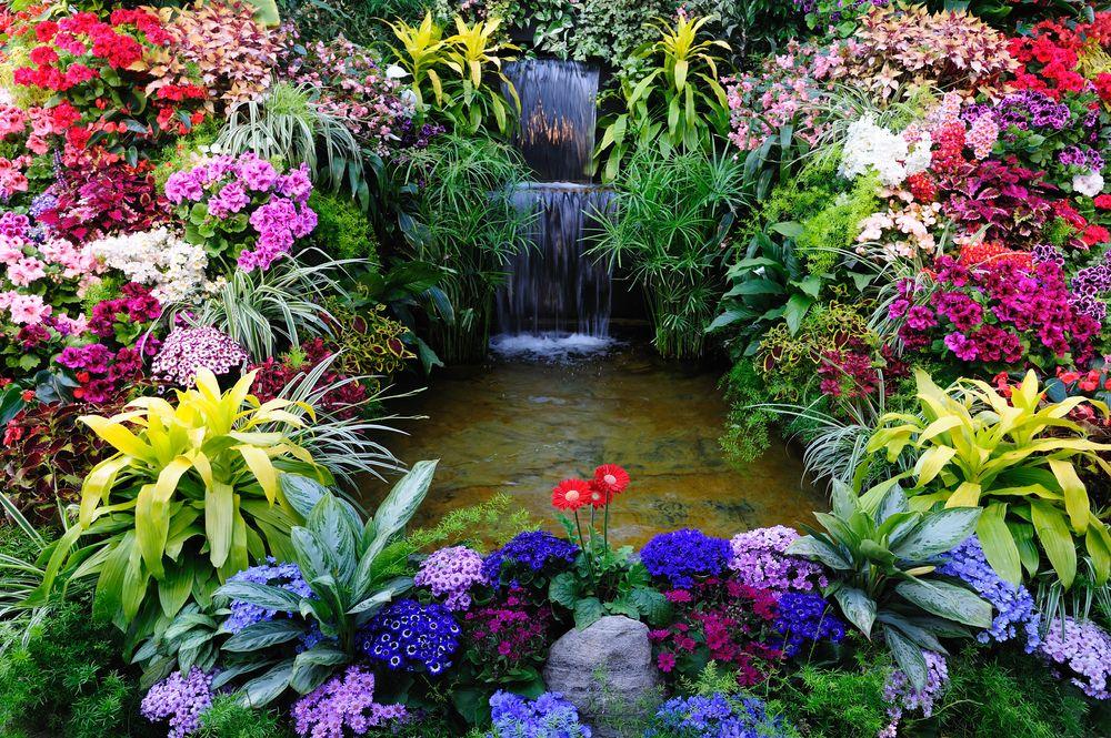 20 Inspirational Garden Flower Photos - Garden Lovers Club   Beautiful  flowers garden, Butchart gardens, Outdoor gardens design