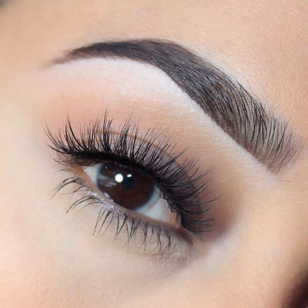f2afdd39faf Vamptress Premium Faux Mink Lashes Lash Conditioner, Arched Eyebrows,  Eyelashes How To Apply,