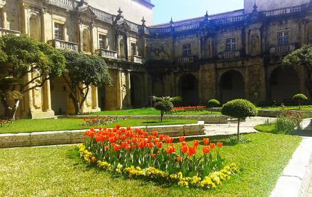 Mosteiro De Santa Clara A Nova Coimbra Guided Tours Triphobo Best Tourist Destinations The Cloisters 19th Century Statue