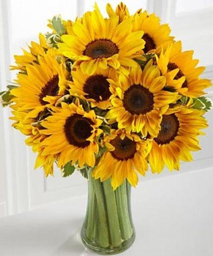 Endless Summer Sunflower Bouquet Sunflower Arrangements Sunflower Bouquets Same Day Flower Delivery
