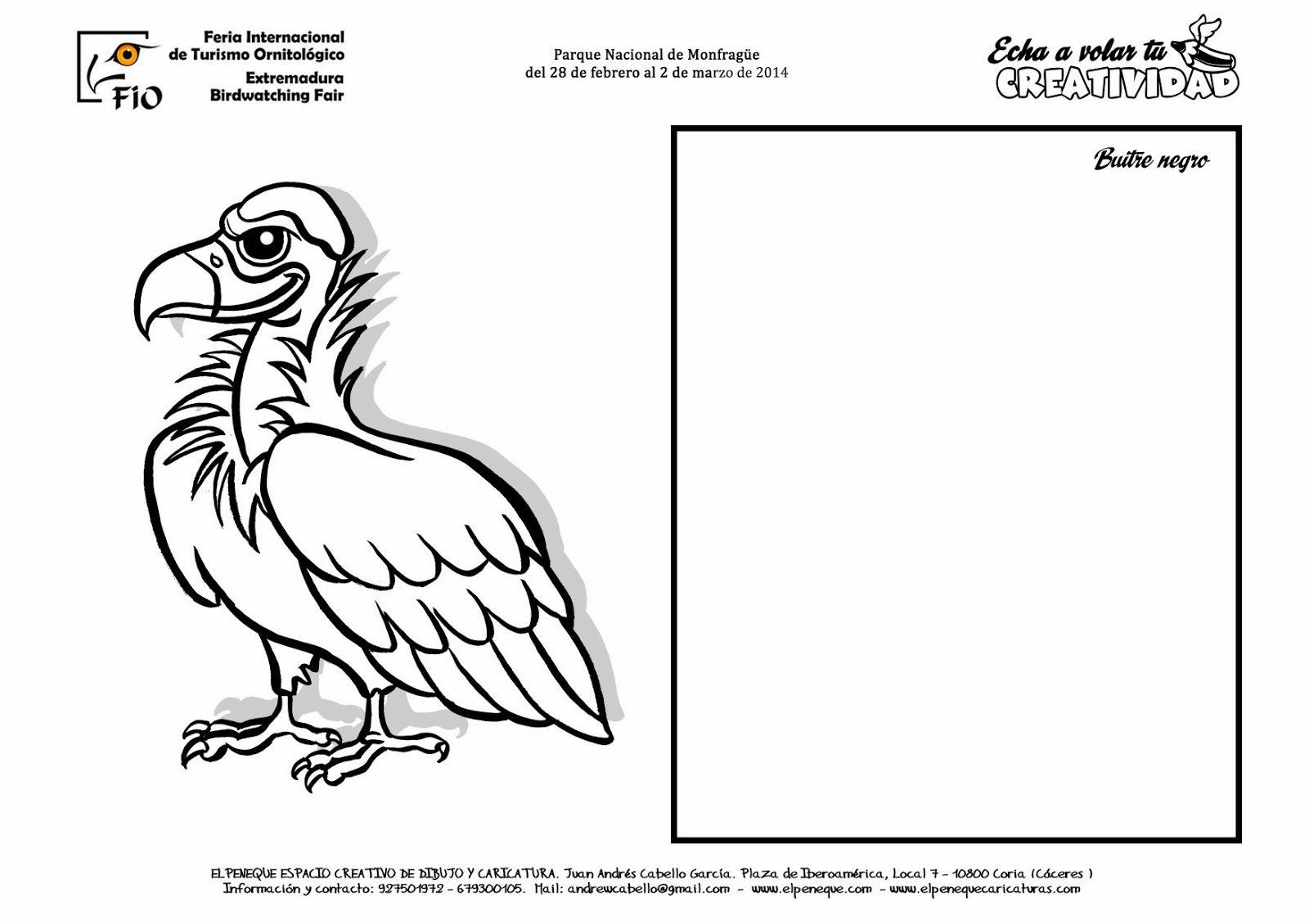 Elpeneque Dibujo Y Caricaturas Dibujos De Aves Dibujos De Colores Aves
