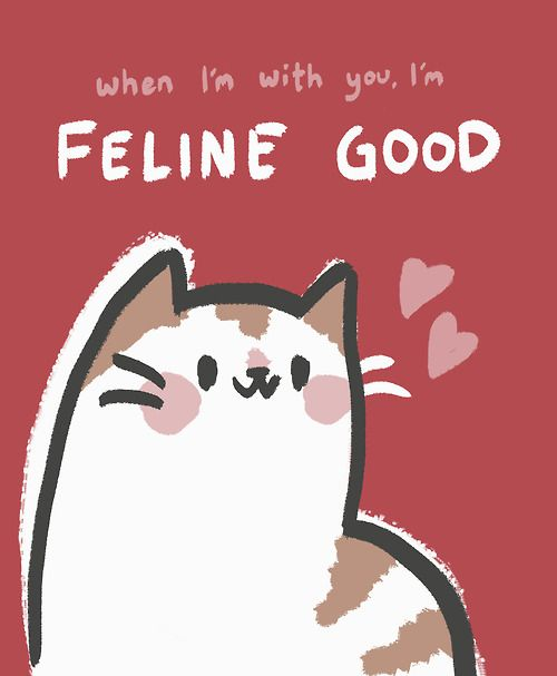 Practice Self Love cats Pinterest – Cat Valentine Card