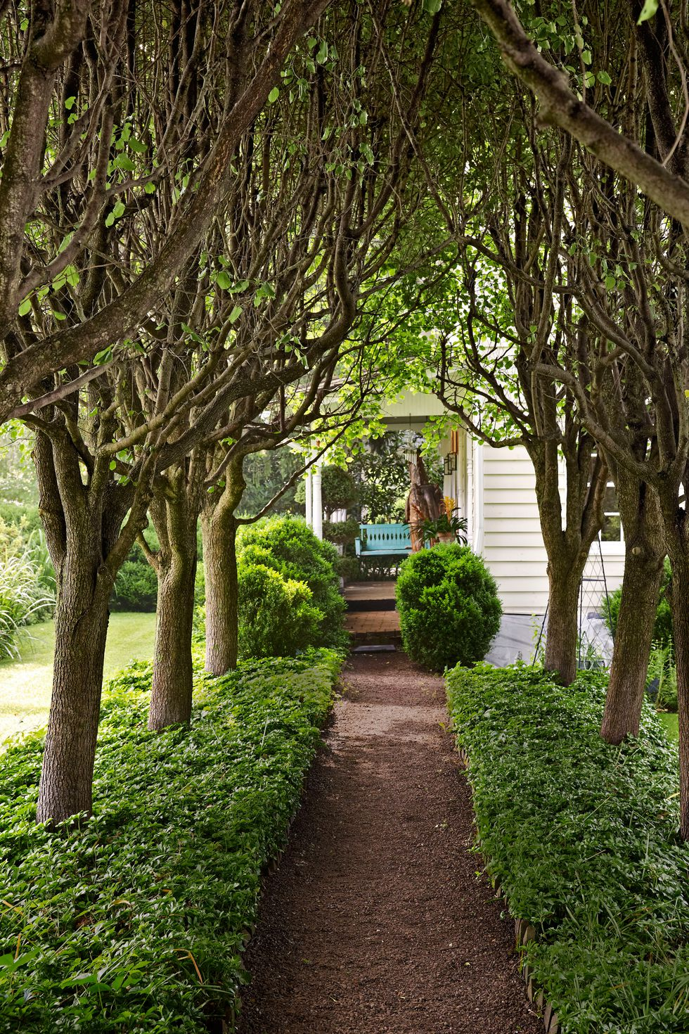 Some Examples of Landscaping Ideas That Can Be Applied on ...