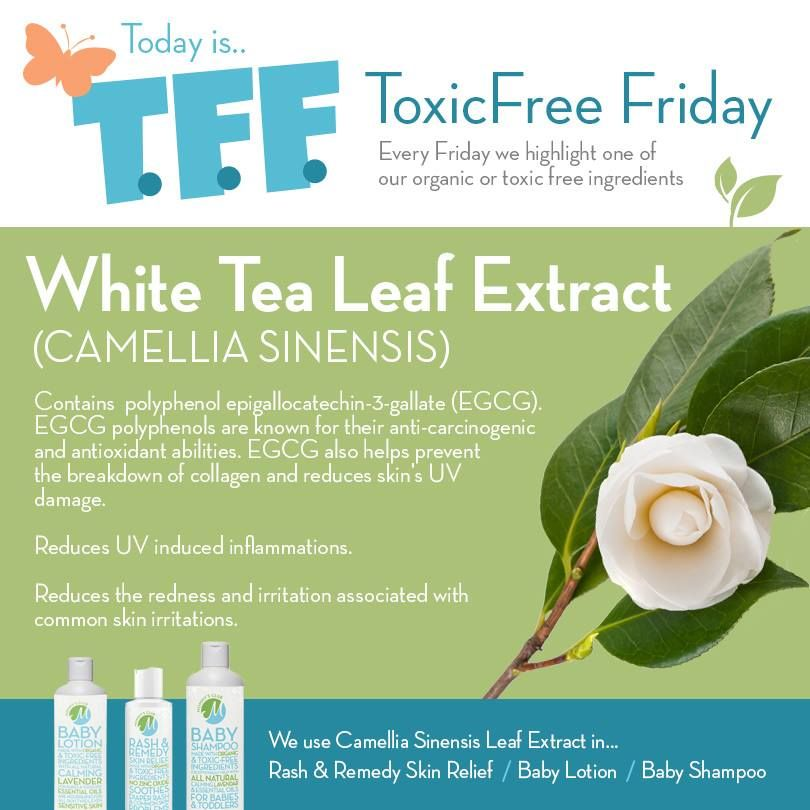 Today is Toxic Free Friday!