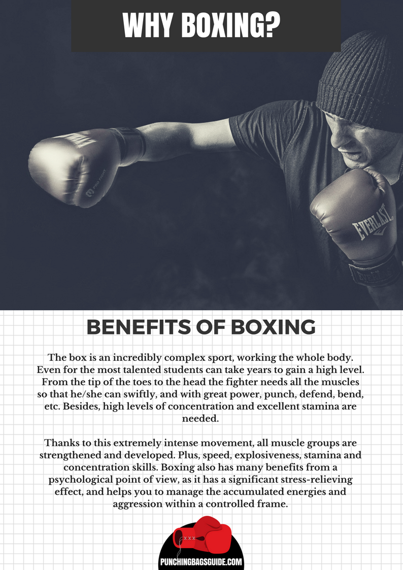 Punching Bag Boxing Equipment Guides For Home Workout Boxing Benefits Boxing Quotes Boxing Workout