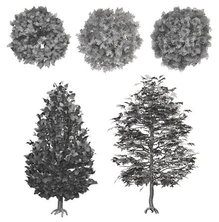 DOSCH DESIGN - DOSCH 2D Viz-Images: Abstract - Trees