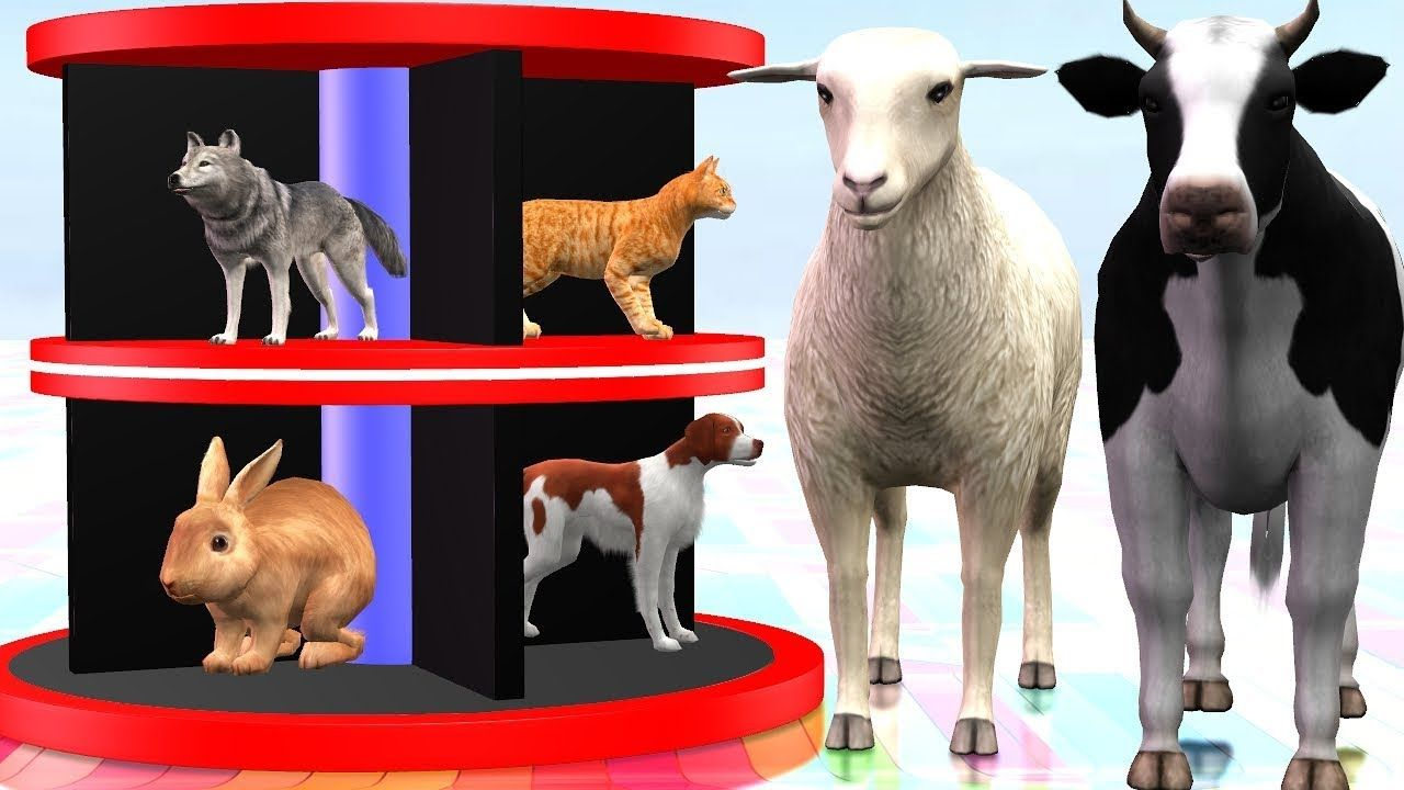Domestic Animals Names And Sounds Video For Kids 3D