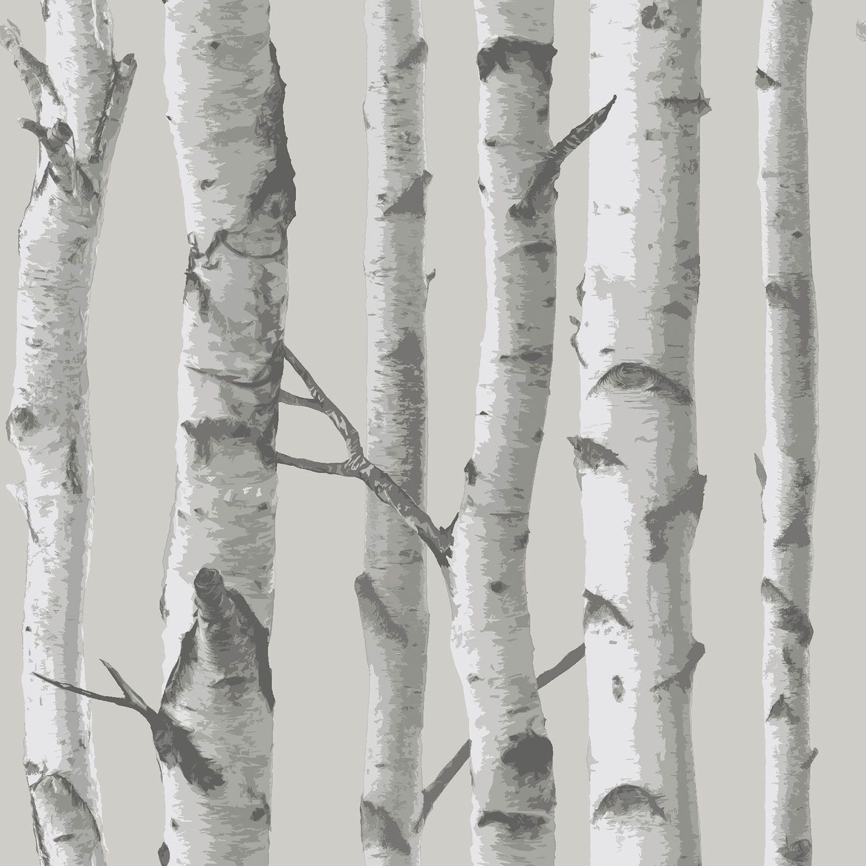 Nuwallpaper Mountain Birch Peel Stick Wallpaper Grey Wall Decor Borders Best Buy Canada Birch Tree Wallpaper Birches Wallpaper White Birch Trees