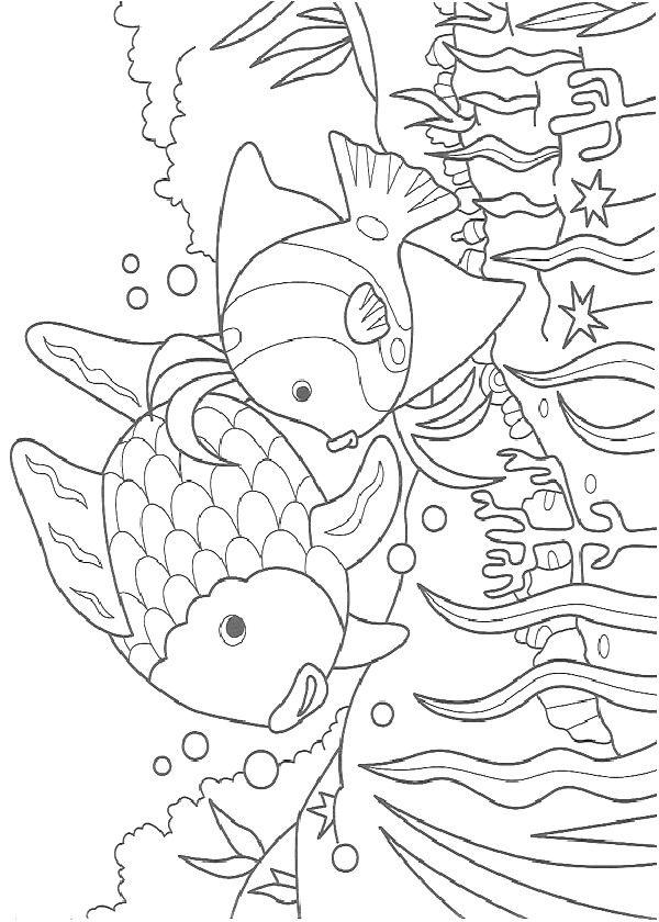 Coloring Page Fish Fish Fish Coloring Page Rainbow Fish Coloring Page Coloring Books