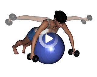 Swiss Ball | Meraki
