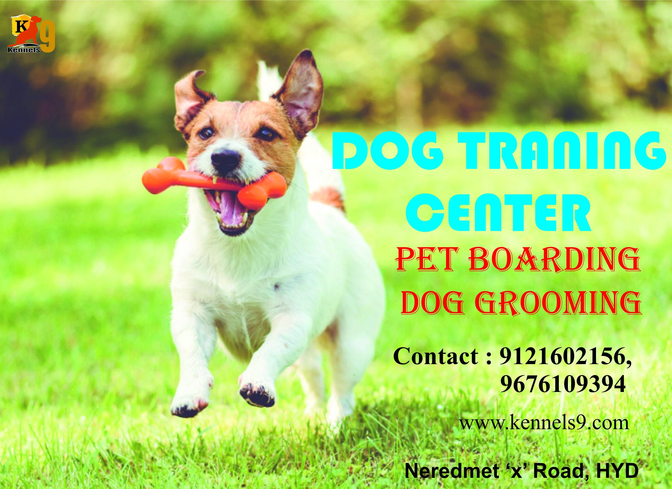 Dog training center is services in Sainikpuri