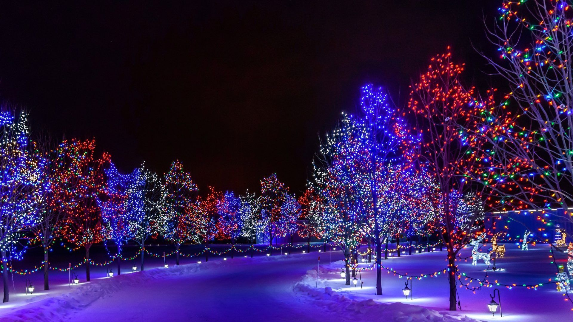 winter lights lanterns christmas road time magic merry