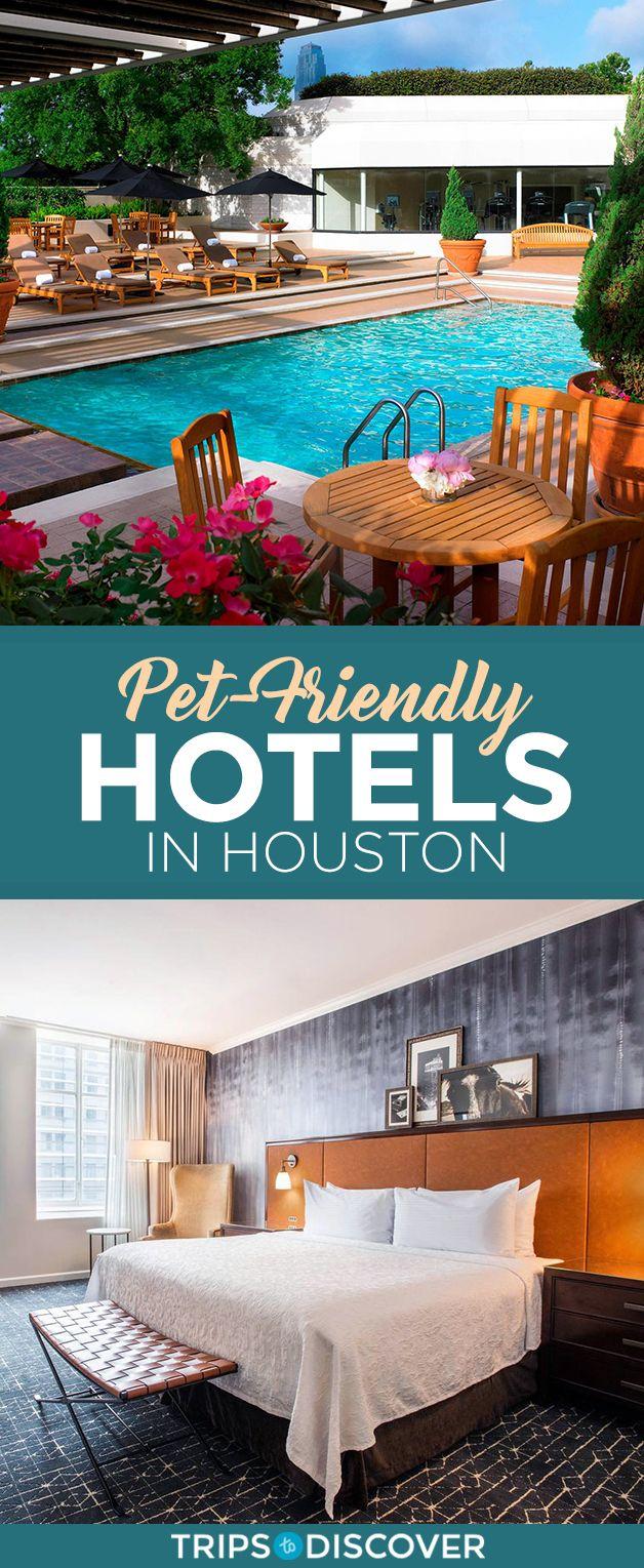 10 of the Best Pet-Friendly Hotels in Houston in 2020 ...