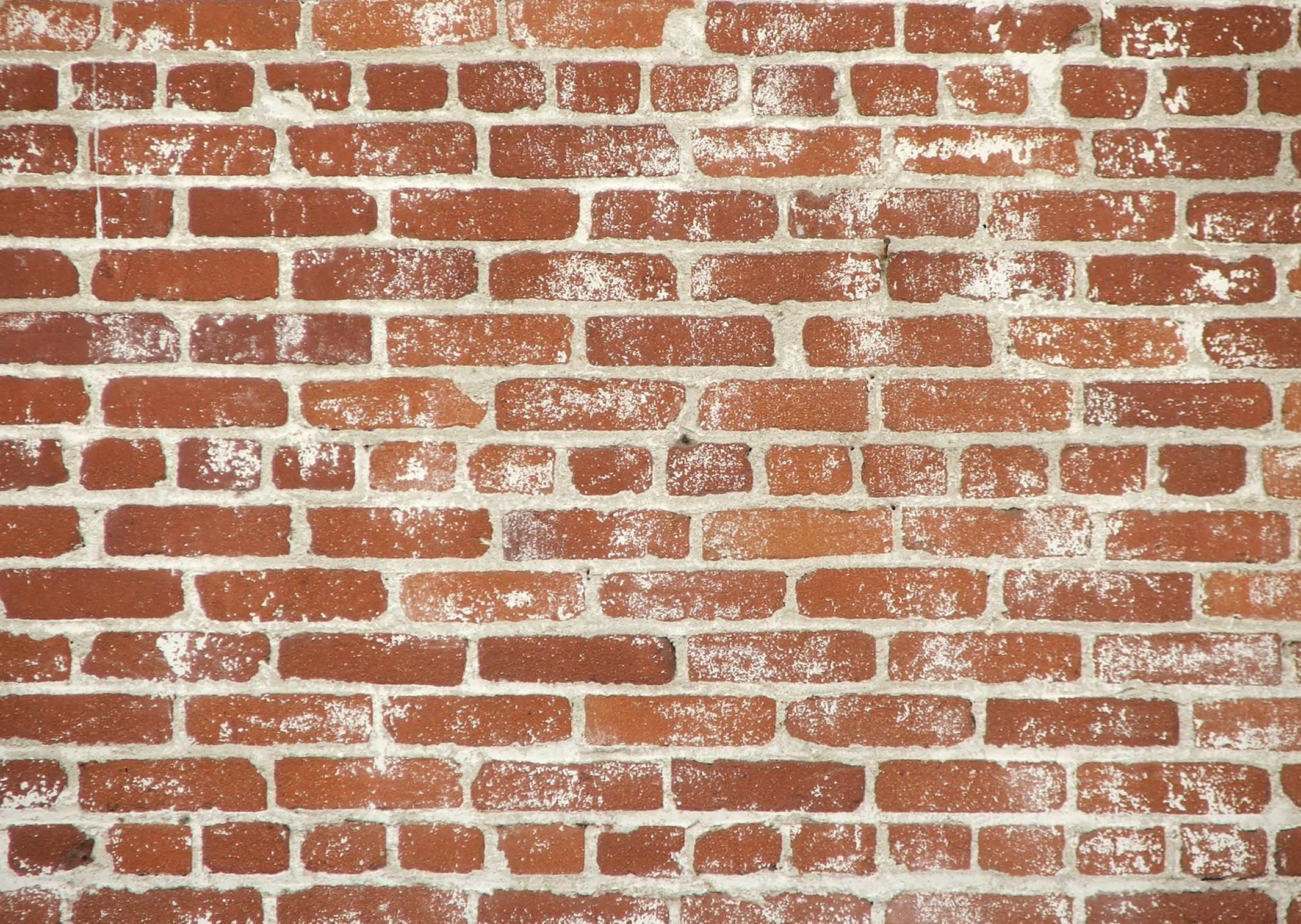Brick wall texture download photo image bricks brick for Wall to wall wallpaper