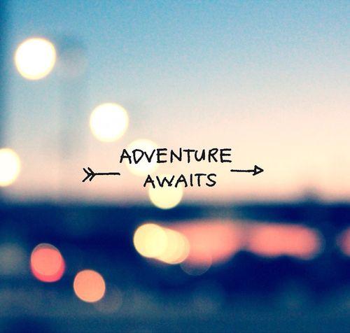 Travel Quotes ️