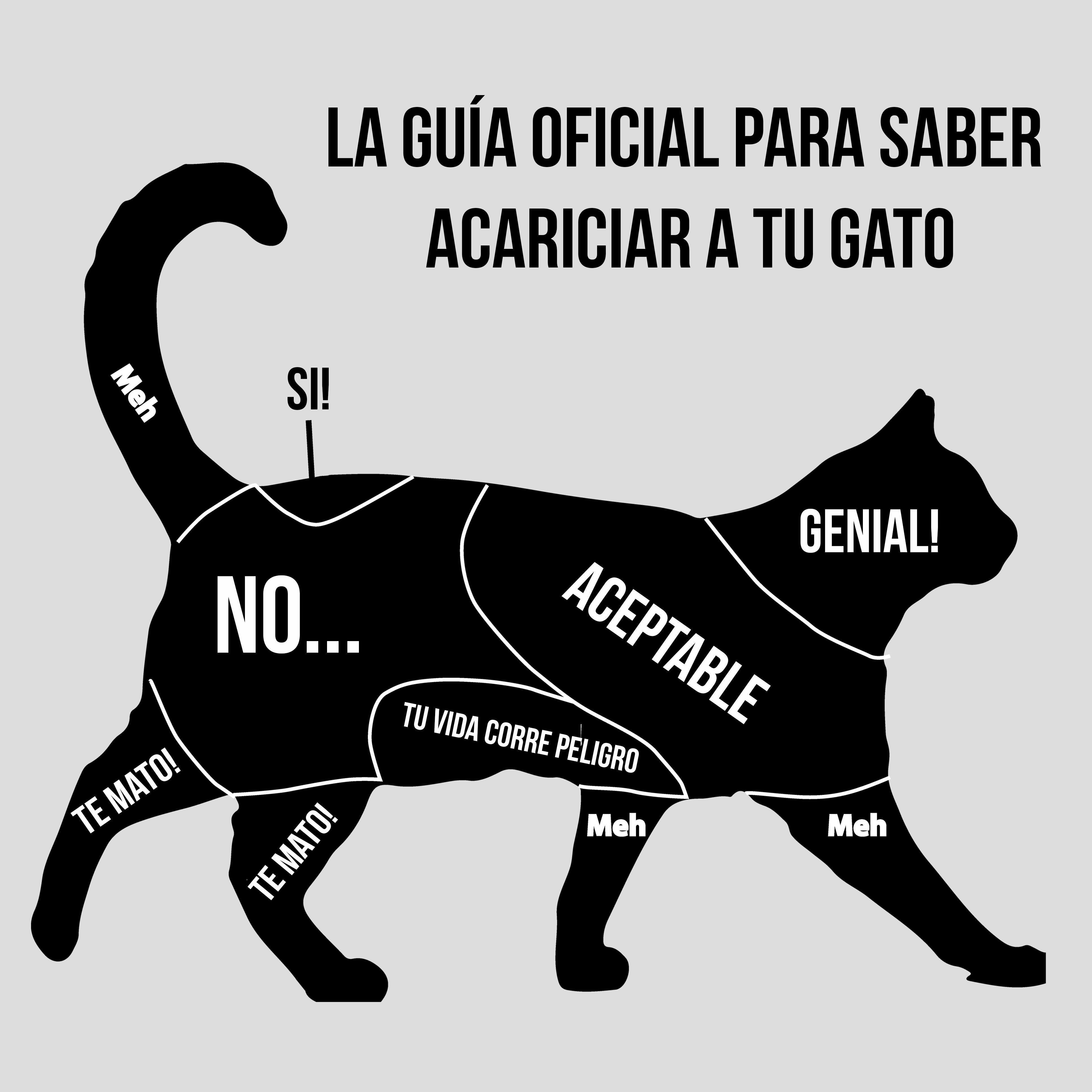 Escrituras Lamas Cat Language Cat Memes Cute Cats
