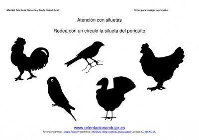 Siluetas De Animales Domesticos Discriminacion Visual Orientacion