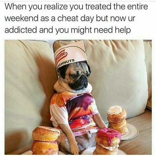 When you realize you treated the entire weekend like a cheat day but now you're addicted and you might need help! Diet and Fitness Humor, Gym Memes, Weight Loss, Fat, Food, Exercise,Workout, Running, Jogging, Fitbit, Cardio, Training, Health, Eat Clean, Paleo #3dayweekendhumor