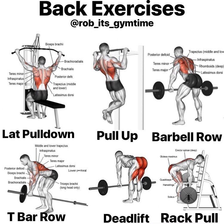 1. At first you should train your back 2-3 times per week. It's easy to hit your back that much when...