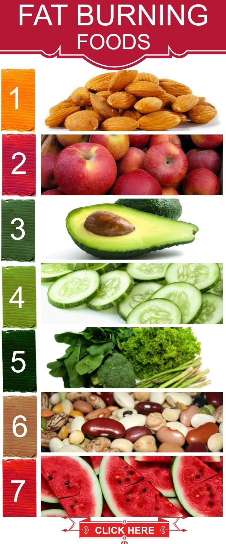 top 25 belly fat burning foods | fat burning foods, fat and belly