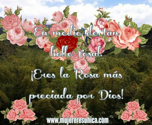 Eres preciada por Dios www.mujereresunica.com