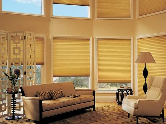 Hunter Douglas Curated By Eurotek Blind Factory 203 171 Commercial Drive Kelowna Bc V1x 7w2 250 765 0222 Cu Honeycomb Shades Window Styles Design
