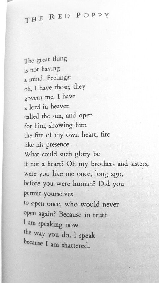 I Speak Because I Am Shattered Louise Gluck Poetry Poetry Words Prose Poetry Louise Gluck