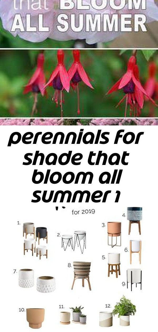 Perennials for shade that bloom all summer 1 15 Cute Pots, Planters + Plant Stands for Spring 2019! Plants and crystals will make your home zen and stylish! Check out our geode meets plant mom inspiration!