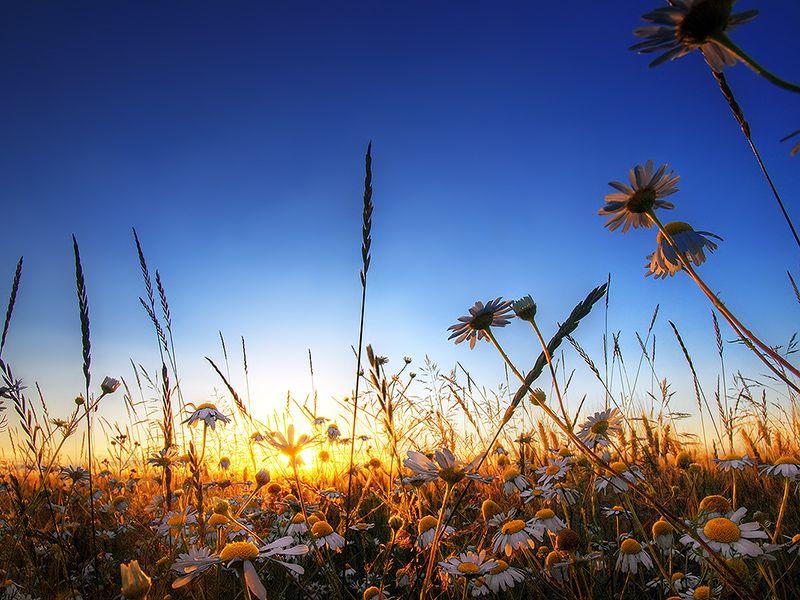 """summeritis"" - stunning landscape photography by zsolt zsigmond"