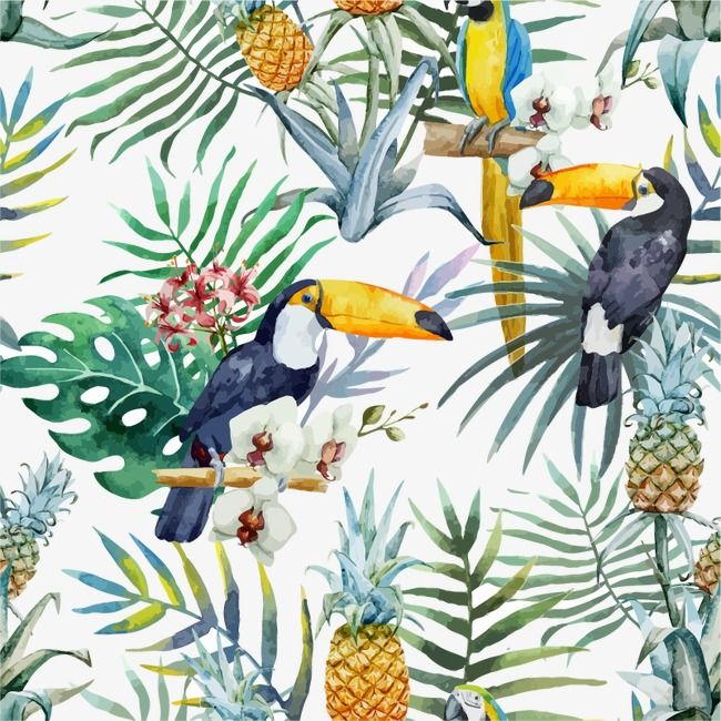 Millions Of Png Images Backgrounds And Vectors For Free Download Pngtree Watercolor Bird Prints Art