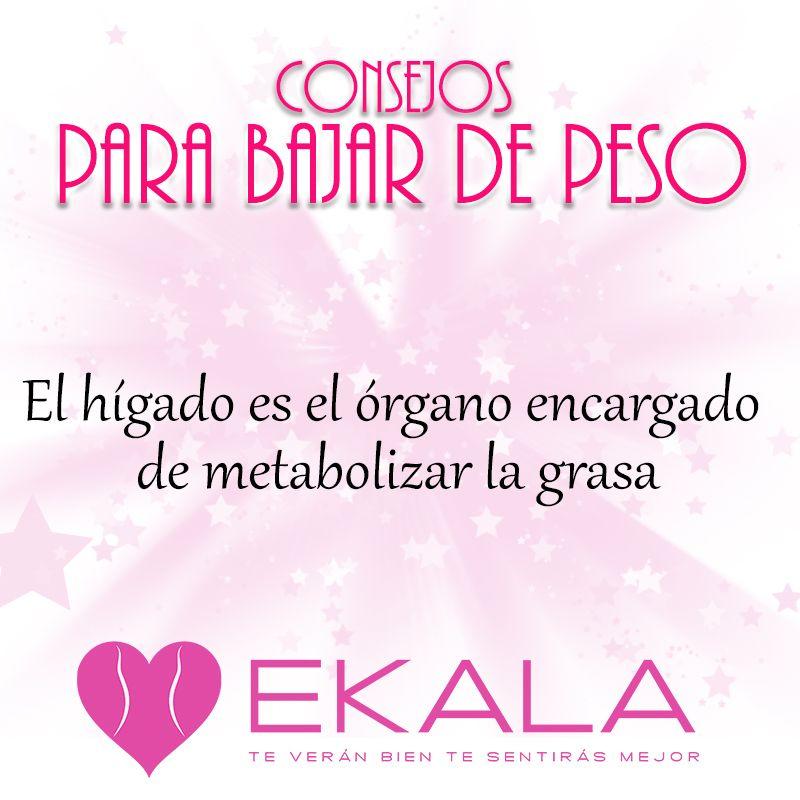 Es importante revitalizar la función del hígado y desintoxicarlo ...