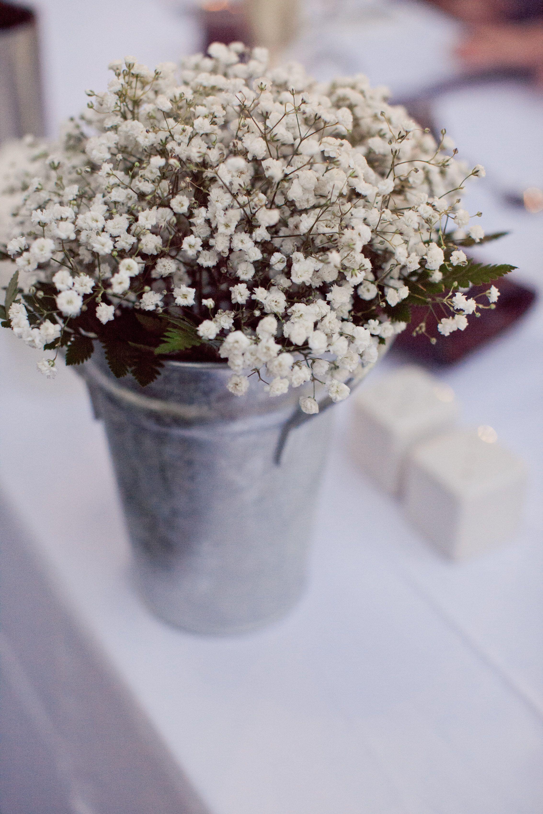 Garden Wedding - Rustic baby's breath