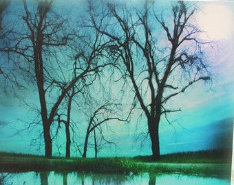 Art, Night sky, 16x20, moon, blue decor, nature photography, decorative arts, trees, reflections