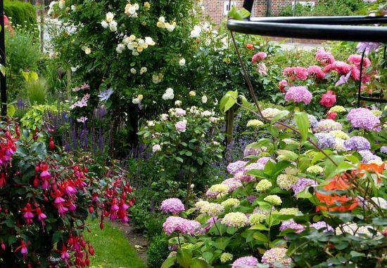 Lovely Erkunde Sch ner Garten Hortensien und noch mehr