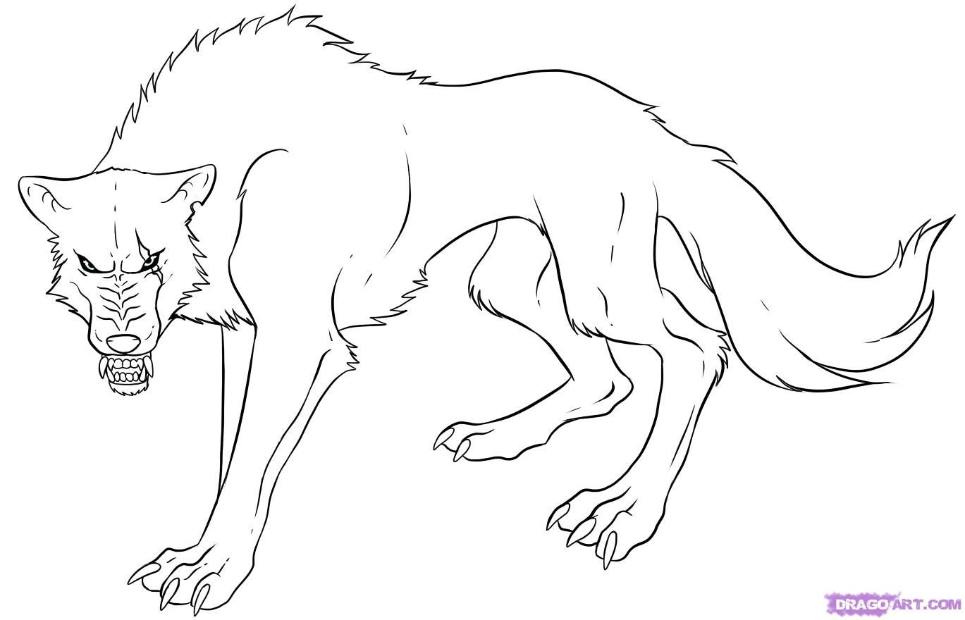 Sketches Of Mean Dogs  How To Draw An Anime Wolf, Step By Step,