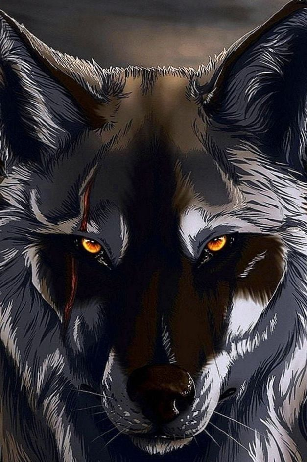 3d Wolf Wallpapers 3d Wolf Wallpapers Shadow Wolf Black Wolf Wolf Wallpaper Black wolf hd mobile wallpaper