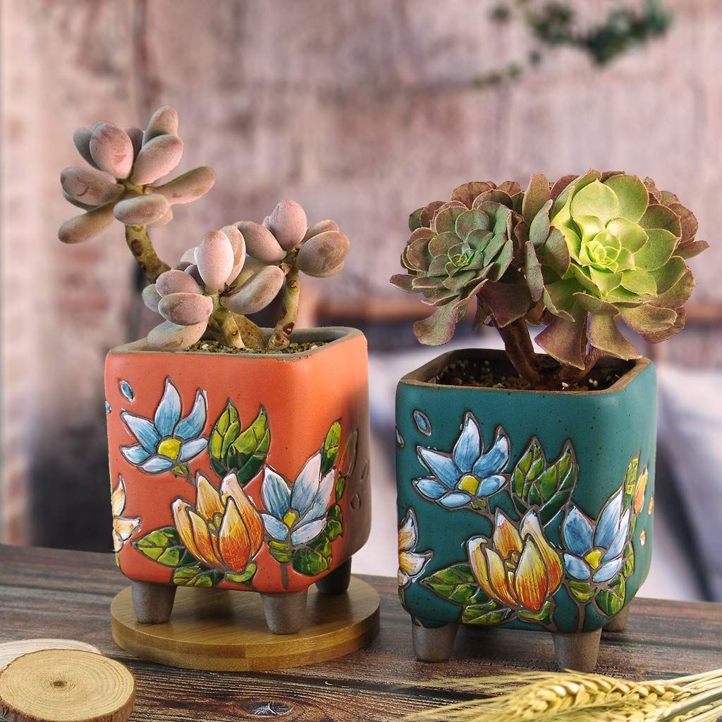 Summer Impressions 4.75 Inch Hand Painted Succulent Cactus Bonsai Plant Pot Clay Pot Flower Pot Planter Container Floral Design Indoor Outdoor (Deep Round with Clay Edge Blue) - #bonsai #cactus #impressions #painted #plant #succulent #summer - #SucculentPlanters