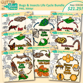 Pin By Line Mc On Skole Insect Life Cycle Life Cycles Bugs And Insects