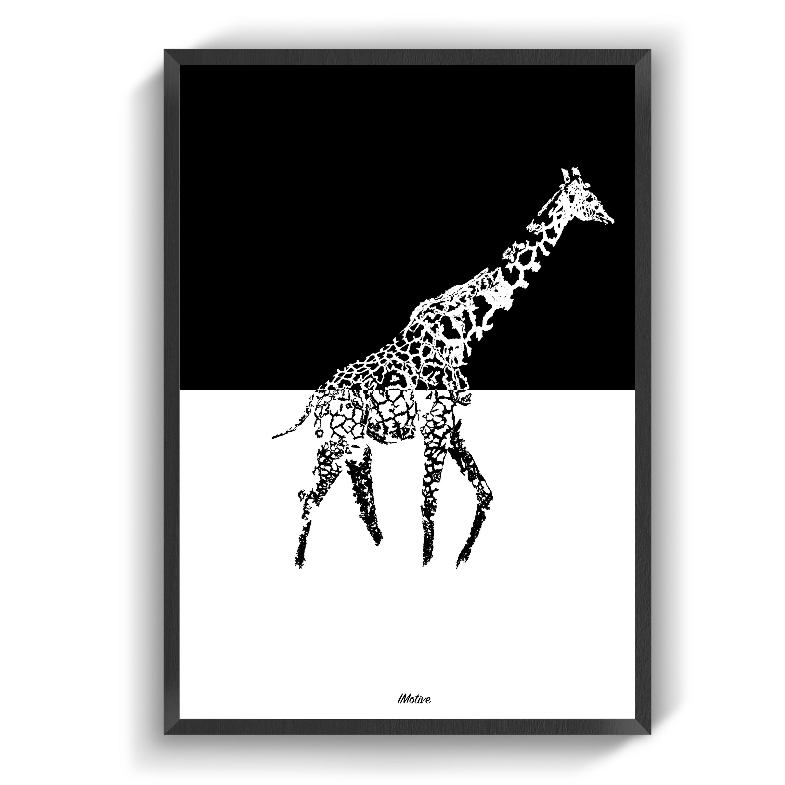 Plakater Giraffen Farver Billeder Plakater