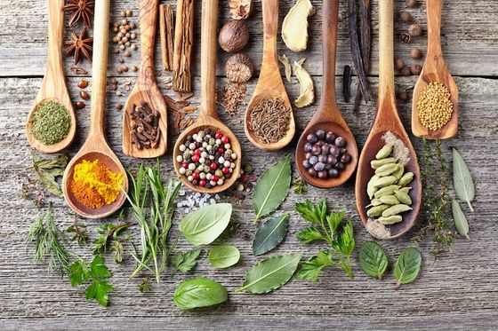 The healing power of traditional herbal remedies is often underestimated. Check out these 10 ancient medicinal herbs that actually work!
