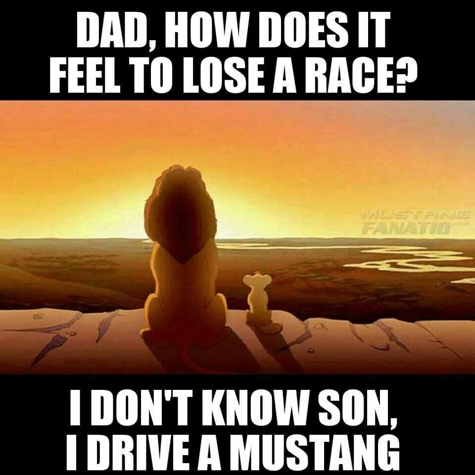 Mustang Quotes Pinmarcia Tomichek Casteel On Mustangs  Pinterest  Mustang