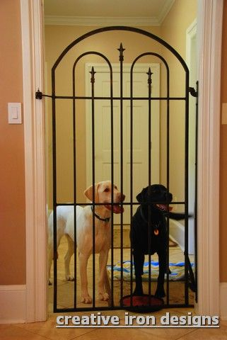 Wow If You Need To Gate Off Your Dog Occasionally This Is The Way
