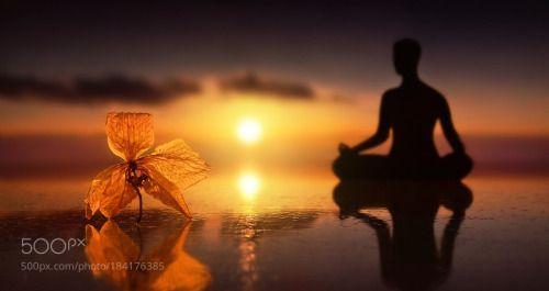 Contemplazione by annaovatta58  macro cielo natura sole spiaggia mare fiore tramonto nuvole acqua donna colori gardenia riflessione
