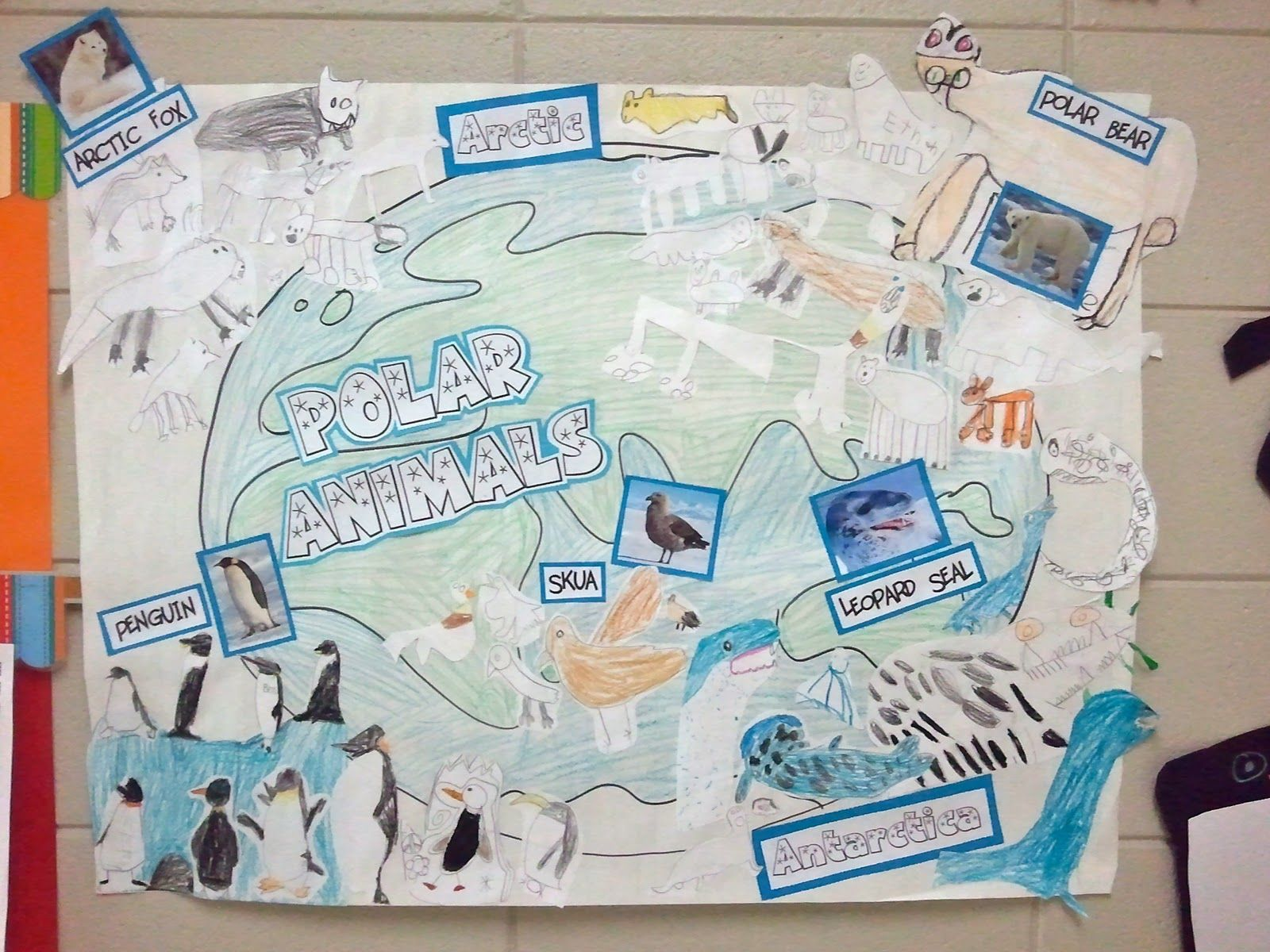 I Like This Idea Of Making A World Map Poster And Putting Arctic And Antarctic Animals In The Right Areas Pin Polar Animals Polar Habitat Antarctic Animals