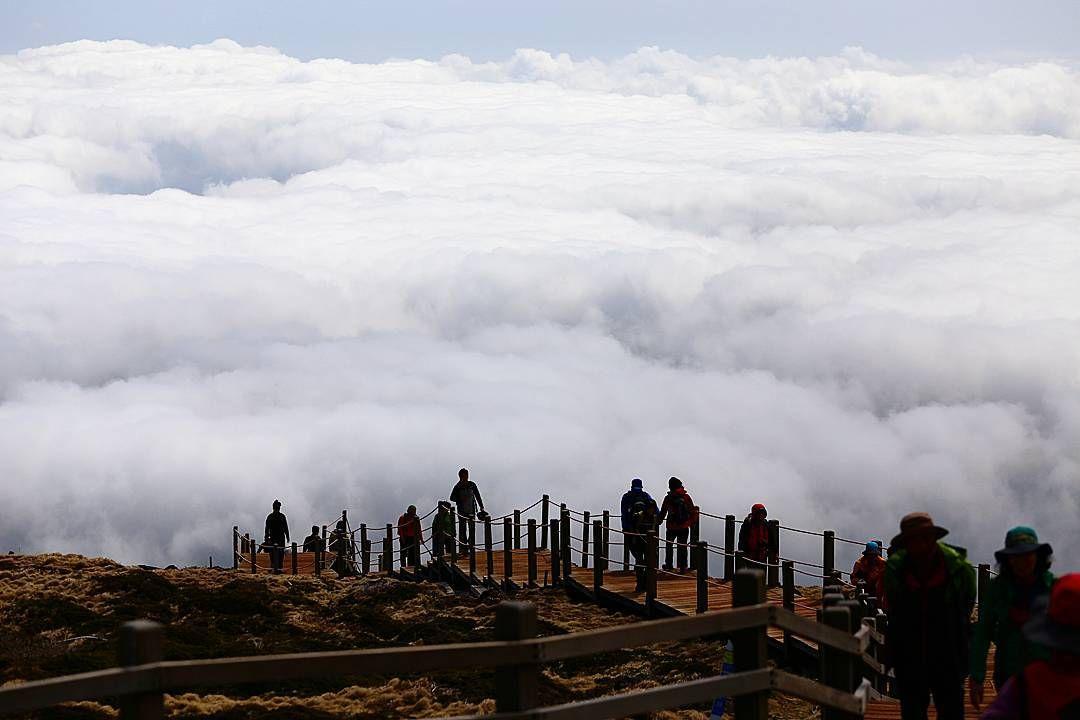 -실시간 인스타그램 -한달에 한번 한라산투어!  4월 15일(금)-성판악- 5월 21일(토)-성판악- 6월 18일(토)-영실-  테마 : 구름위의 산책 목적지 : 한라산 준비물 : 선글라스등산화 참가비 : 없음 서비스 : 스냅  #한라산투어#제주도여행#jeju#jejuisland#travel#제주도가볼만한곳#제주도여행코스#tour#landscape#제주여행#제주#가족여행#제주카페#한라산#제주스타그램#제주도게스트하우스#서귀포게스트하우스#제주게스트하우스#성판악코스#영실코스#어리목코스#제주도카페#제주도스타그램#제주도맛집#서귀포맛집#제주맛집#등산#등산스타그램#국내여행지#나홀로여행 by skywoong