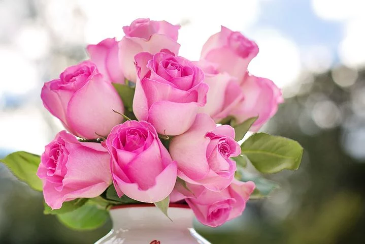 Free Image On Pixabay Pink Roses Roses Flowers Romance Beautiful Pink Roses Beautiful Pink Flowers Pink Flowers